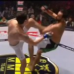 TOP 30 MMA Knockouts 2015